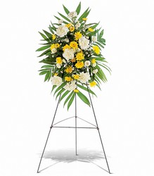 Yellow Dawn Spray from Ruby's Leesville Florist in Leesville, LA